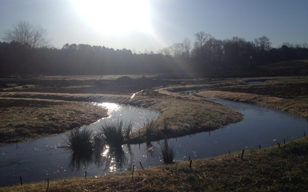Pancho Stream and Wetland Mitigation Bank – Goldsboro, NC
