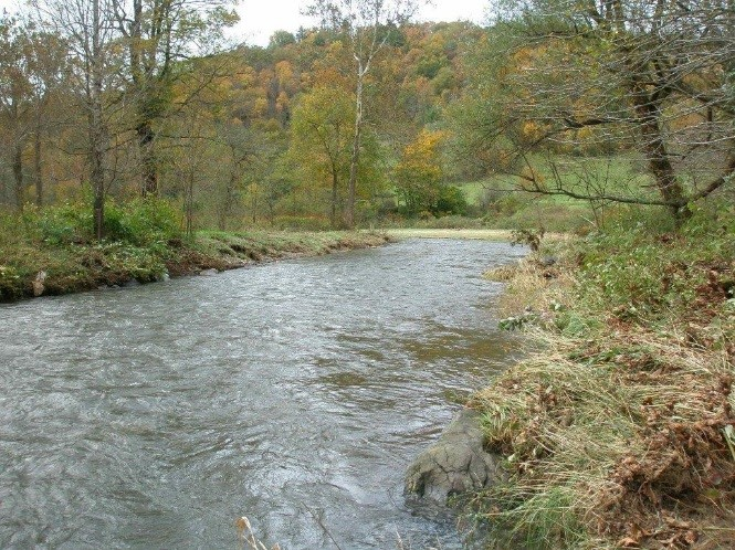 Townsend Site Stream Enhancement – Plumtree, NC