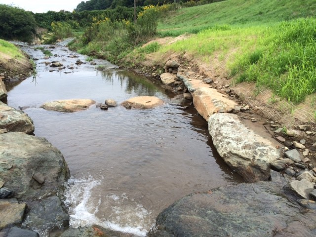 Turner Stream Stabilization (Cove Creek) – Boone, NC